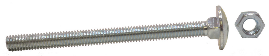 M6 x 50 mm Zinc Plated Small Carriage Bolts and Nuts