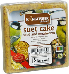 Seed and Mealworm Suet Cake