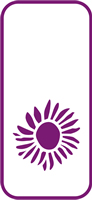 135 mm x 60 mm Mini Stencil Sunflower Bloom