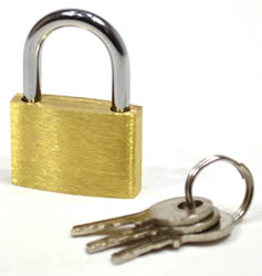 25 mm Brass Padlock