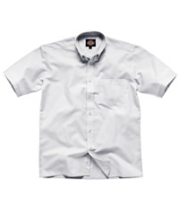 Dickies Short Sleeve Cotton Oxford Shirt