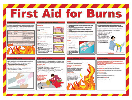 420 x 590 first aid for burns wallchart