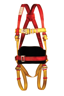 Pioneer s body harness