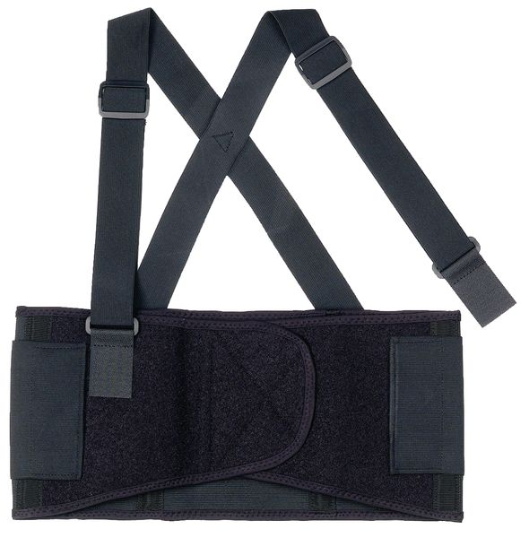 Budget Back Support Belt Size L Large Lifting Belts Supports
