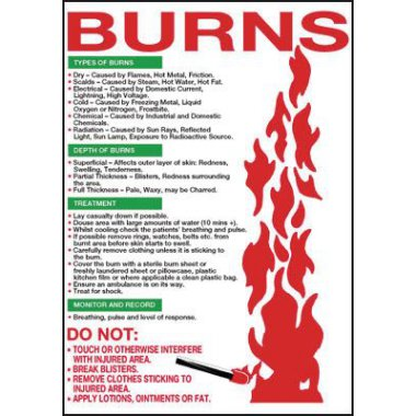 600 x 420 mm Burns Wallchart Posters