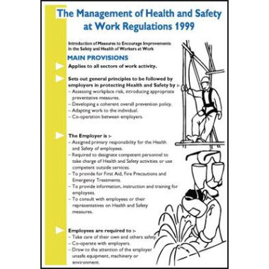 The Mgmt of H And S At Work 1999 Wallchart Posters